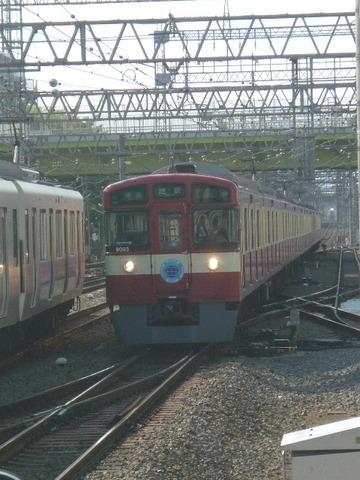P1990745.JPG