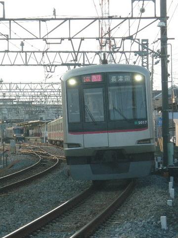 P2030530.JPG